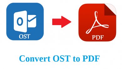 convert-ost-email-to-pdf